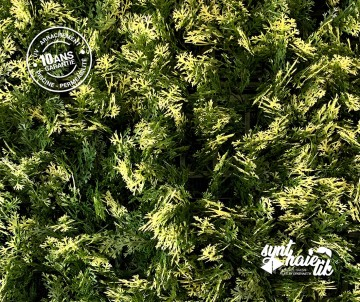 Brise vue Haie artificielle Feuillage artificiel Cyprès Marbré à 34.95TTC/m²
