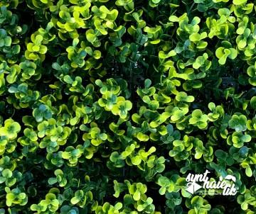 Brise vue Feuillage artificiel Buis Vert