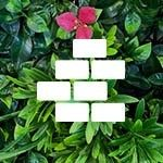 Mur vegetal artificiel